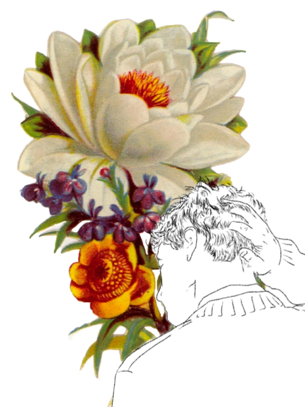 Collage chico flores